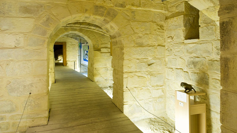 Mdina Cathedral Basement (11)